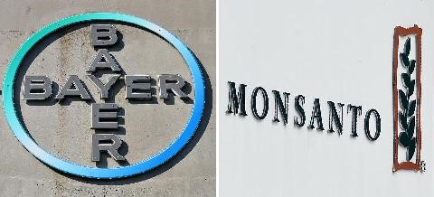 bayer-compra-monsanto