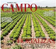 Revista del Campo destaca momento actual de la Industria Semillera en Chile