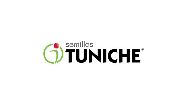 Tuniche