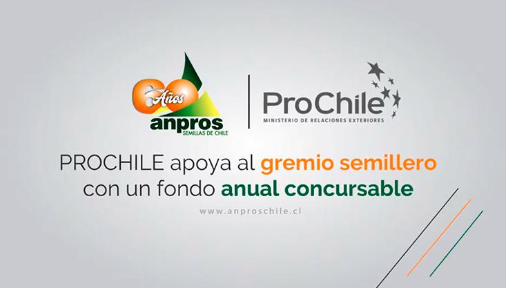 ANPROS – PROCHILE: «PROCHILE apoya al gremio semillero con un fondo anual concursable