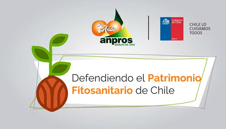ANPROS – SAG: Defendiendo el Patrimonio Fitosanitario de Chile