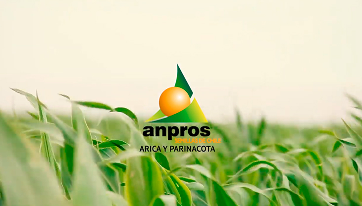 Video Comité Arica – Parinacota de ANPROS