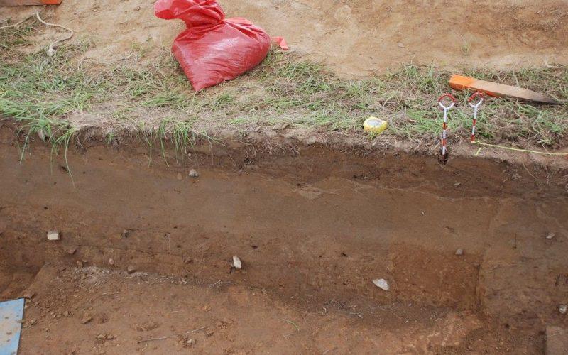 Cómo solucionar un suelo compactado