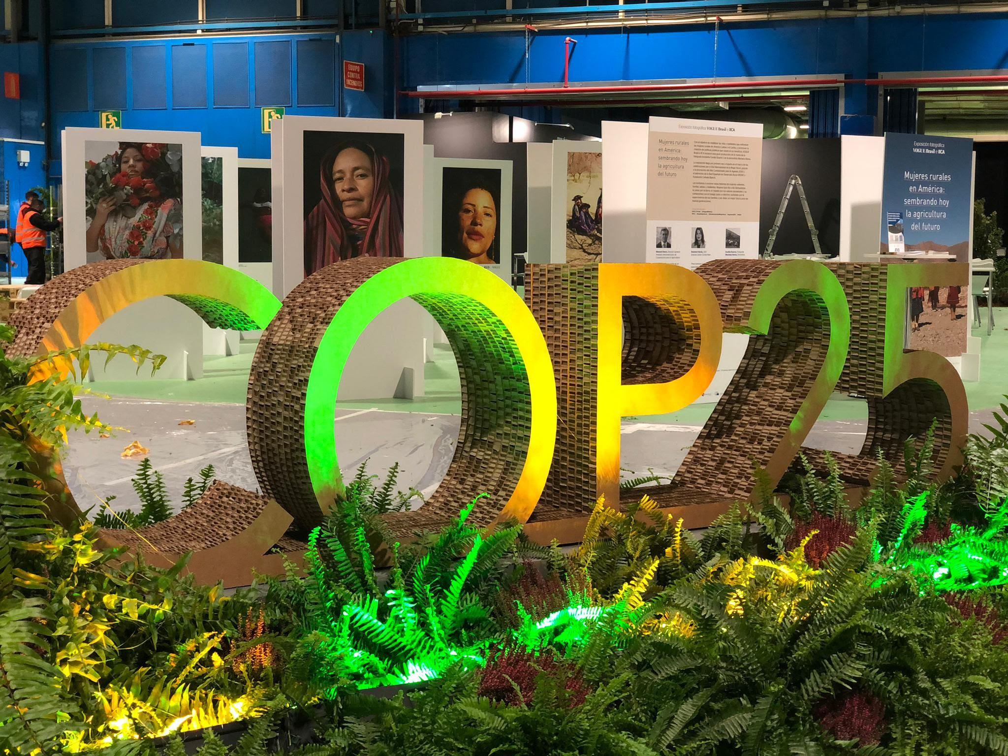 Enfrentar el cambio climático requiere una decidida acción intersectorial, afirma el IICA