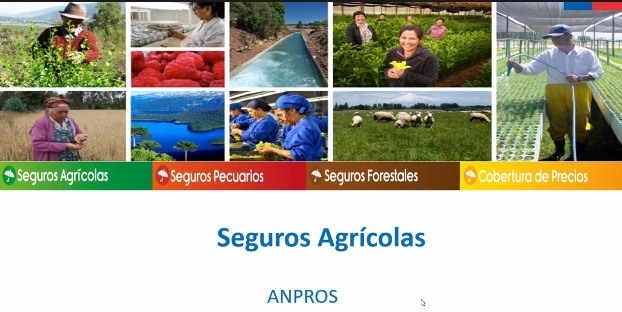 ANPROS Y AGROSEGUROS CAPACITAN A SOCIOS SOBRE LOS SEGUROS AGROPECUARIOS CON SUBSIDIO ESTATAL