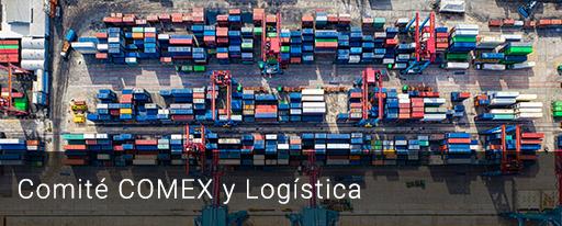 Comité COMEX y Logística