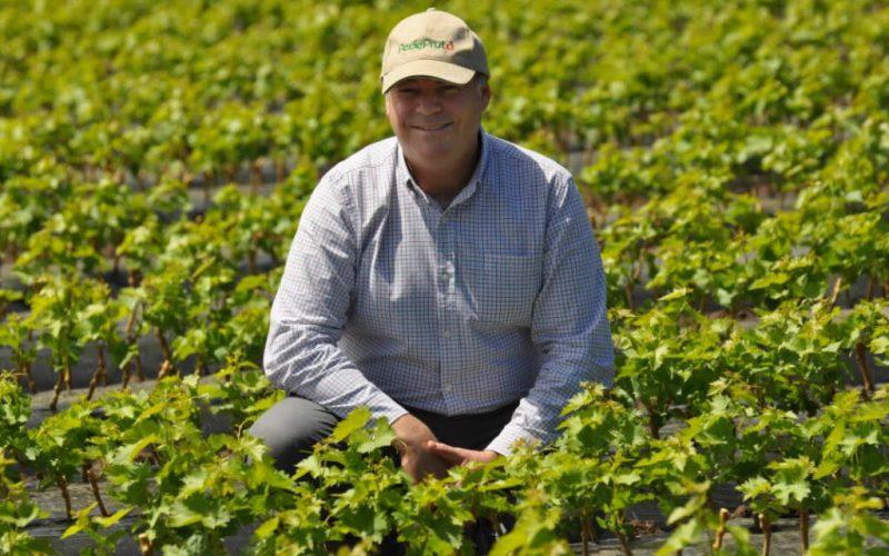 Jorge Valenzuela es reelecto como presidente de Fedefruta